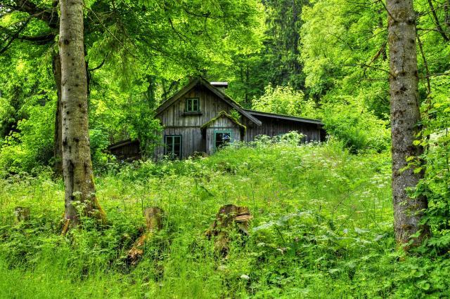 Krymska Cabin