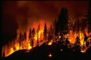 Mures Valley in flames