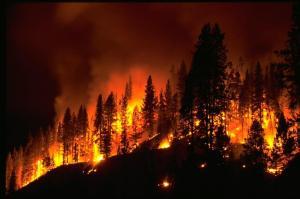 Mures Valley in flames